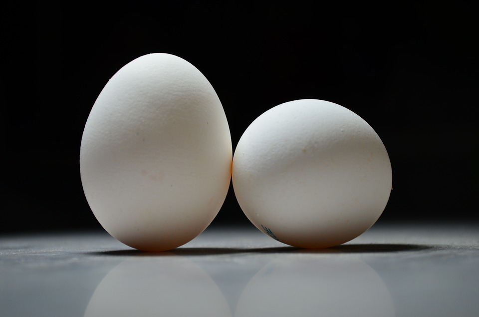1 Egg Calories