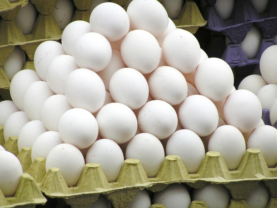 1 Egg Fat