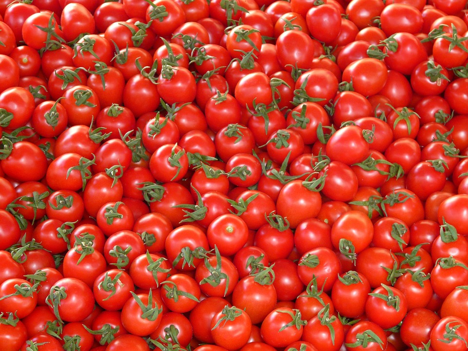 Tomato Nutrition Facts: Health Benefits and How Good for you is it?